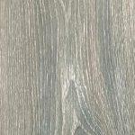 Virginia Oak 019